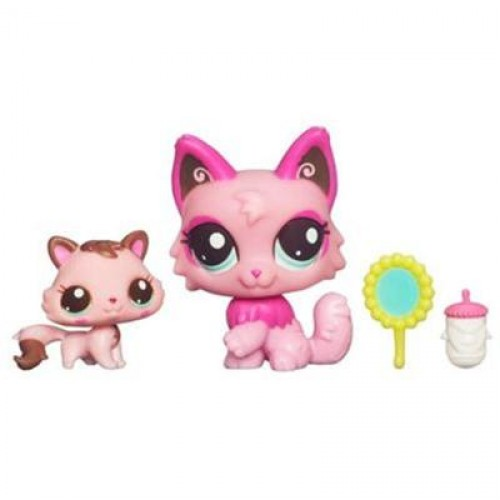 Cat pet shop online