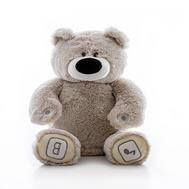 Игрушка Luv'n Learn интерактивный медведь серый (20010L), фото 1